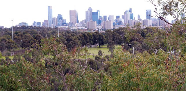 Continued development of our cities is putting pressure on urban green spaces. AAP/David Crosling