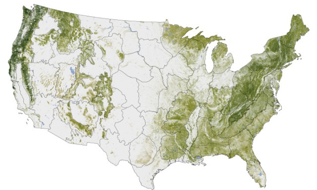 Tree cover and carbon storage in the United States (NASA Earth Observatory creative commons license).